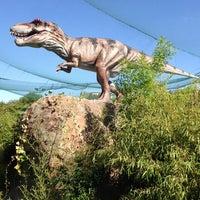 Slider Dinosaur
