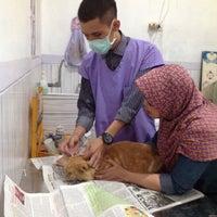 Photo taken at Klinik Hewan dan Petshop Kasih satwa by Nana D. on 12/13/2015