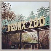 Photo prise au Bronx Zoo par Chase W. le4/19/2013