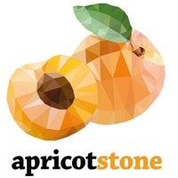 apricot stone
