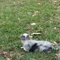 Photo taken at Waterways Dog Park by Albert M. on 3/17/2013