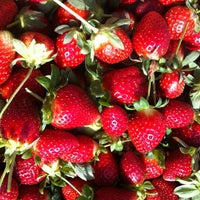Photo taken at Pappy's Strawberry Patch by Denise Y. on 1/19/2013