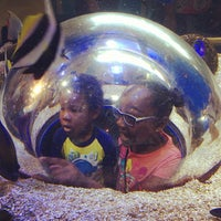 Photo taken at Adventure Aquarium by James N. on 7/6/2013