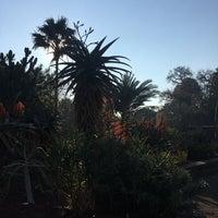 Photo taken at Succulent Garden by Anna K. on 7/29/2017