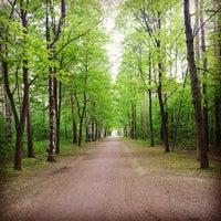 Снимок сделан в Парк «Сосновка» пользователем Ian C. 5/20/2013