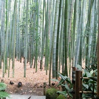 Photo taken at 竹の庭 by Yoko Y. on 6/22/2014