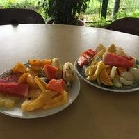 Photo taken at Tropical Fruit Farm by Jake B. on 1/7/2018
