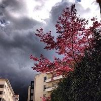 Photo taken at Rue de Marseille by David T. on 2/21/2014