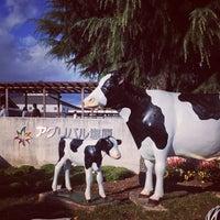 11/3/2012にkat t.が道の駅 湯の香 しおばら (アグリパル塩原)で撮った写真