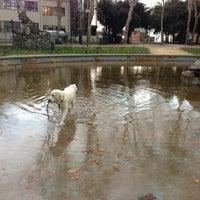 Foto scattata a Parco della Montagnola da Alice S. il 3/12/2013