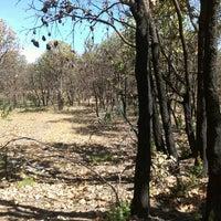 Foto tomada en Bosque De La Primavera por Izam M. el 4/6/2013