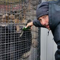 Photo taken at Wildwood Wildlife Park by Amanda J D. on 10/5/2014