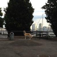 Photo taken at Sirius Dog Run by Sean M. on 11/25/2012
