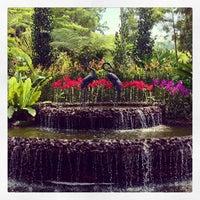 Das Foto wurde bei National Orchid Garden von Eiríkr J. W. am 6/23/2013 aufgenommen