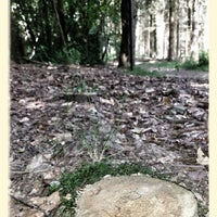 Photo taken at Bois de Tihange by Jean M. on 7/14/2013