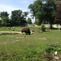 Photo taken at Bison by 😁 Jenn B. on 7/21/2013