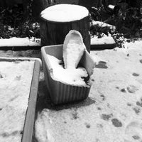 Photo taken at via Sottoripa by Fabi on 2/12/2013