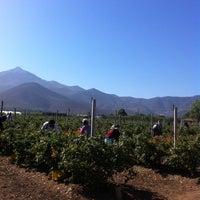 Photo taken at Santa Olivia (La Palma Quillota) by Miguel  on 12/10/2013