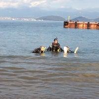 11/19/2012에 Ricardo M.님이 大瀬崎 ダイバーズ イン フジミ에서 찍은 사진