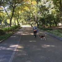 Photo taken at 靭公園犬のお散歩 by S.Kajimoto on 10/15/2016
