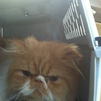 Photo taken at PetSmart by A on 1/13/2013