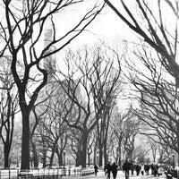 Foto scattata a Literary Walk da Tessa G. il 12/31/2014