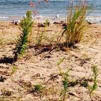 Photo taken at Peninsula State Park - Boat Landing by Kim on 8/14/2014