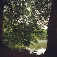 Das Foto wurde bei Neuer See von Bunz am 6/14/2013 aufgenommen