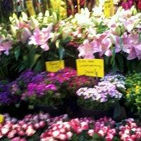 Photo taken at Markt am Carlsplatz by Andrea G. on 8/24/2013