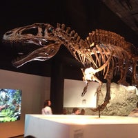 Foto tirada no(a) Houston Museum of Natural Science por Chris em 5/24/2013