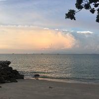 Photo taken at Beach Blanket Babylon by Rachel R. on 11/4/2016