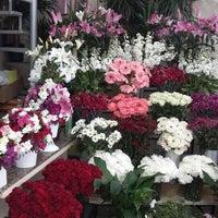 Photo taken at Sevda Flowers by Sertaç D. on 2/18/2015