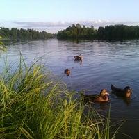 Photo taken at Озеро Сювеярви (Хиттоловское) by Alessia K. on 7/12/2013