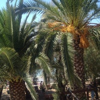 Photo taken at Molyvos Hotel 1 by Emel A. on 8/19/2014