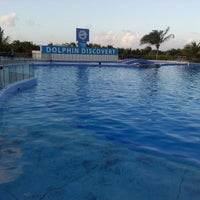 Photo taken at Dolphin Maroma By Dolphin Discovery by Lydia d. on 12/6/2013