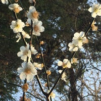 Photo taken at 聴秋閣 by Chie on 3/17/2018