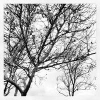 Photo taken at Wheatfield Park by Jason V. on 1/11/2013