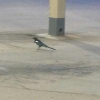 Photo taken at Motel 6 Denver West Wheat Ridge-North by Dorre Z. on 10/6/2014