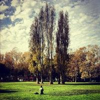 Foto scattata a Washington Square Park da Jason C. il 11/15/2012