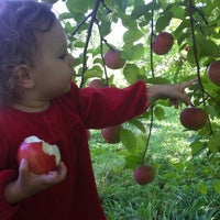 Photo taken at Brookfield Orchard by Amber G. on 9/15/2012