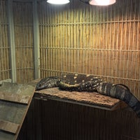 Photo taken at Pinellas County Reptiles And Pets! by Anthony C. on 8/28/2017