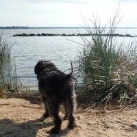 Photo taken at Black Point (Jamestown Island) by Jill Z. on 9/4/2013