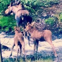 Photo taken at Hope, Alaska by Joe F. on 7/7/2014