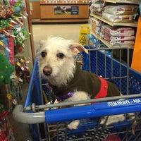 Photo taken at PetSmart by Diana Z. on 12/24/2015
