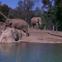 Photo prise au Elephant Odyssey par Ahmed A. le3/15/2013