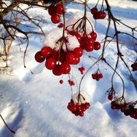 Photo taken at Стародуб by Alena B. on 1/26/2014