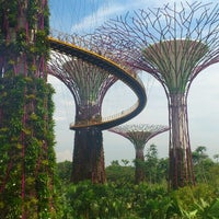Foto scattata a Gardens by the Bay da Audrey il 4/10/2013
