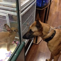 Photo taken at Pet Supermarket by Mo E. on 5/30/2014