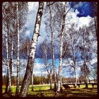 Photo prise au Парк культуры и отдыха им. 30-летия ВЛКСМ par Aleksey B. le5/2/2013