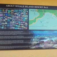 Photo taken at Rainbow Divers - Whale Island by Noel© on 9/17/2012